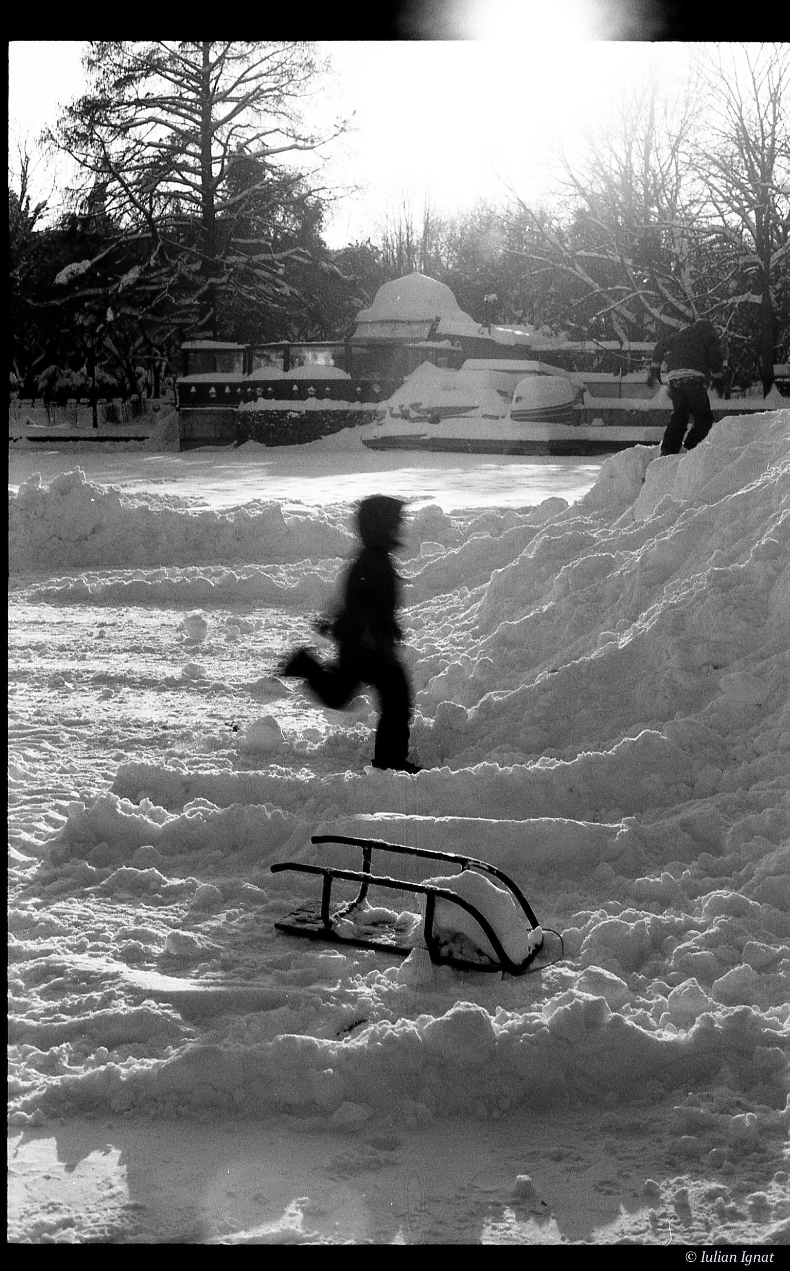 ianuarie352