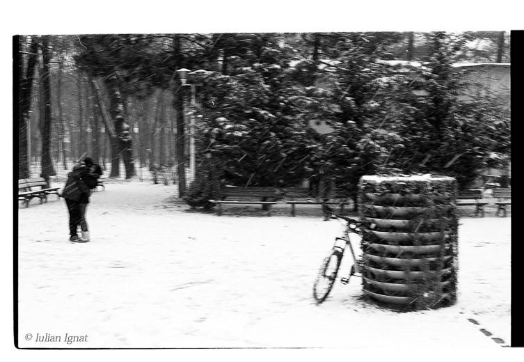 Iarna103